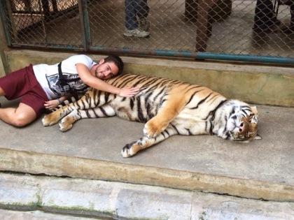 tiger selfie